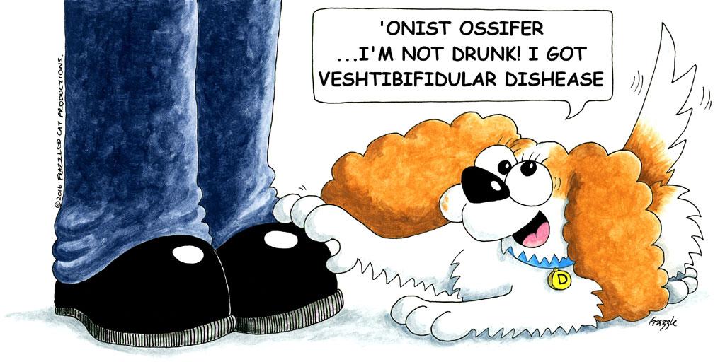 vestibular disease � cavalier matters